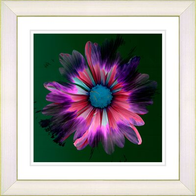 'Fire Flower' Framed Graphic Art in Black Size: 14