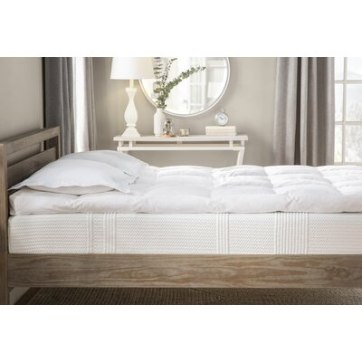 4 Feathers Mattress Topper Size: Queen