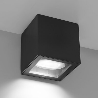 Basolo 1-Light LED Flush Mount