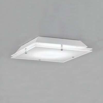 Ventana Wall or Ceiling Light