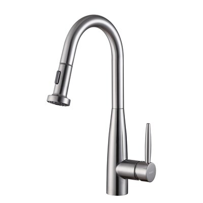 Turino Single Handle Kitchen Faucet with Pull Out Spray