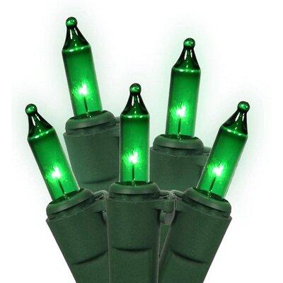 Mini Christmas Light Decoration Color: Green