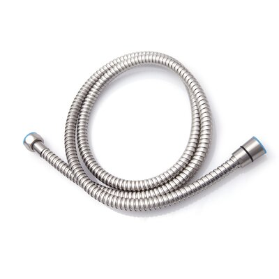 100 Stainless Steel Flexible Shower Hose Finish: Brushed Nickel