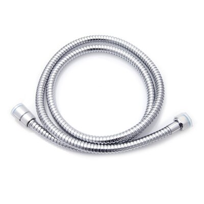 100 Stainless Steel Flexible Shower Hose Finish: Polished Chrome