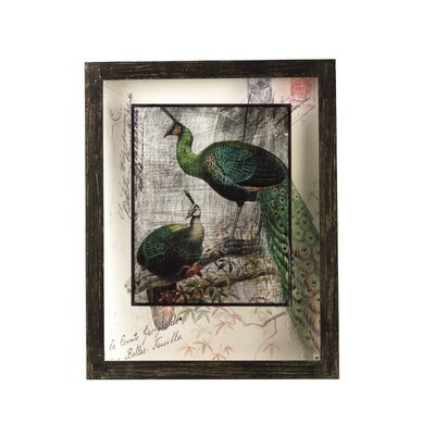 Peacock Framed Graphic Art