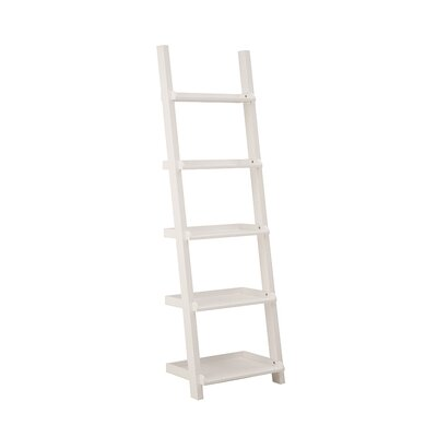 Asterix Ladder Shelf Product Photo 1