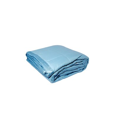 Blanket Color: Blue, Size: Twin