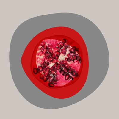 Pomegranate by Irena Orlov Painting Print on Wrapped Canvas Size: 18