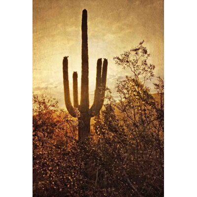 Silhouette of the Saguaro by Robertson Painting Print on Wrapped Canvas Size: 18