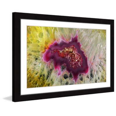 Colorful Composition Framed Photographic Print Size: 20