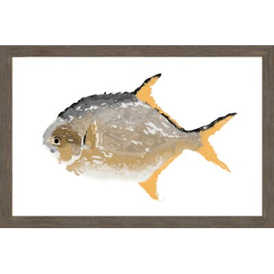 "'Golden Pompano' Framed Painting Print Size: 20"" H x 30"" W x 1.5"" D MH-MICPAN-02-NRFP-30"