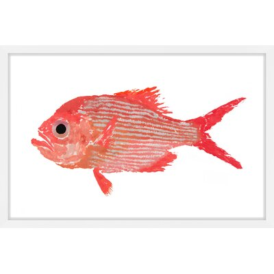 """'Golden Snapper' Framed Painting Print Size: 20"""" H x 30"""" W x 1.5"""" D MH-MICPAN-05-NWFP-30"""