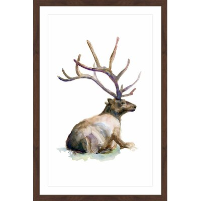 'Deer Ping' by Michelle Dujardin Framed Painting Print