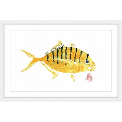 "'Golden Trevally' Framed Painting Print Size: 20"" H x 30"" W x 1.5"" D MH-ANDCLA-38-WFP-30"