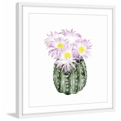 'Cactus Bloom I' Framed Painting Print Size: 12