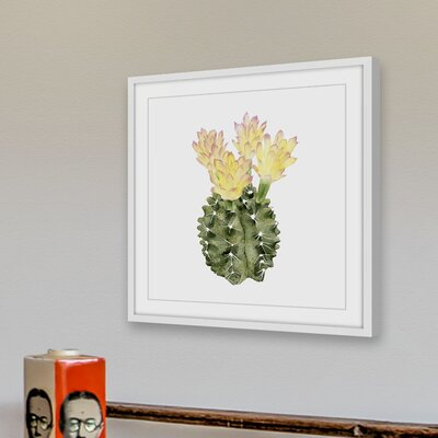 'Cactus Bloom II' Framed Painting Print Size: 12