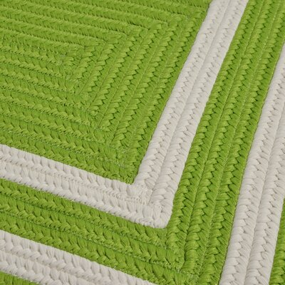 Marti Hand-Woven Outdoor Green Area Rug Rug Size: Runner 2 x 6