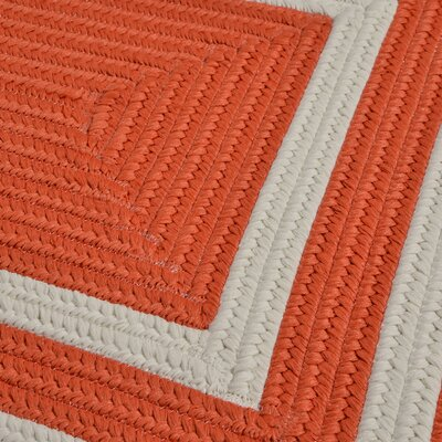 Marti Hand-Woven Outdoor Orange Area Rug Rug Size: Runner 2 x 6