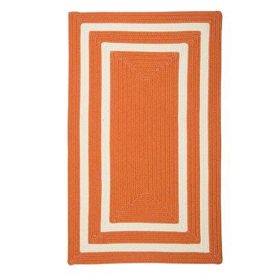 Marti Hand-Woven Outdoor Orange Area Rug Rug Size: Runner 2 x 8