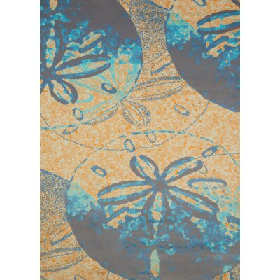 Island Breeze Sand Dollar Cove Peach Area Rug Rug Size: 53 x 72
