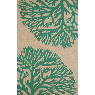 Coral Gables Hand-Woven Green/Beige Indoor/Outdoor Area Rug Rug Size: 111 x 3