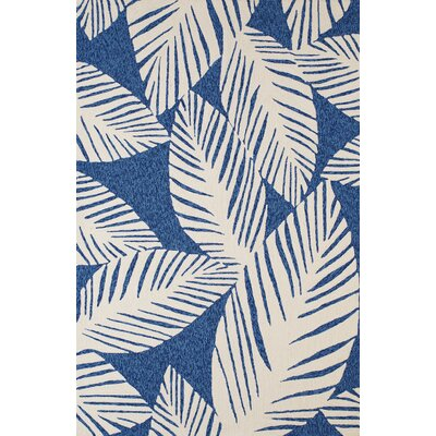 Palm Coast Hand-Woven Blue Indoor/Outdoor Area Rug Rug Size: 5 x 76