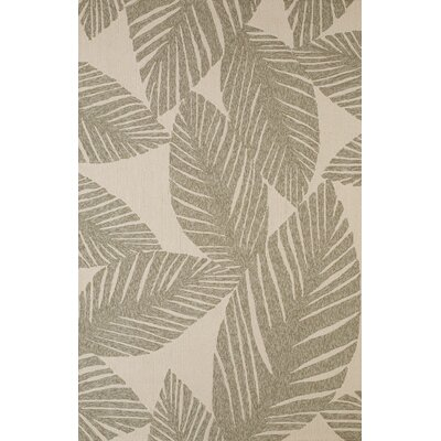 Palm Coast Hand-Woven Gray/Beige Indoor/Outdoor Area Rug Rug Size: 5 x 76