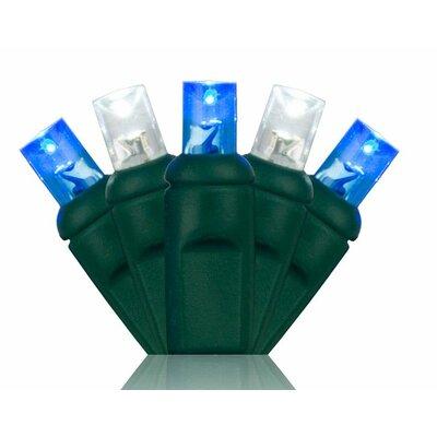 70 5mm LED Christmas Lights Color: Blue/Cool White