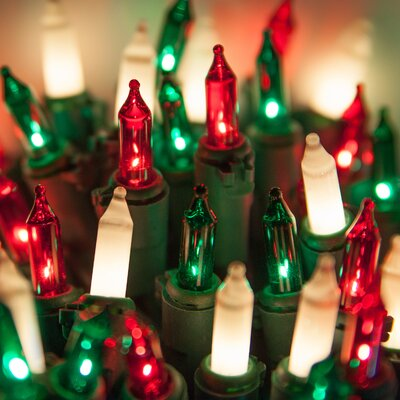 Wintergreen Lighting 50 Frost/Red/Green Mini Light String with Lamp Lock and Wire