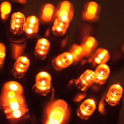 70 LED Christmas Light String Color: Amber Light/Black Wire