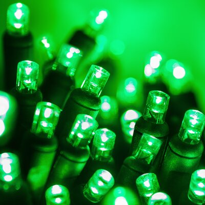 70 LED Christmas Light String Color: Green Light/Black Wire