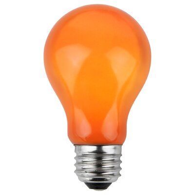 25W Orange 130-Volt Light Bulb (Pack of 25)