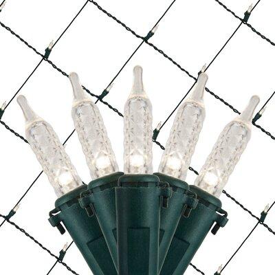 100 Light Net LED Light Bulb Color: Cool White 20492