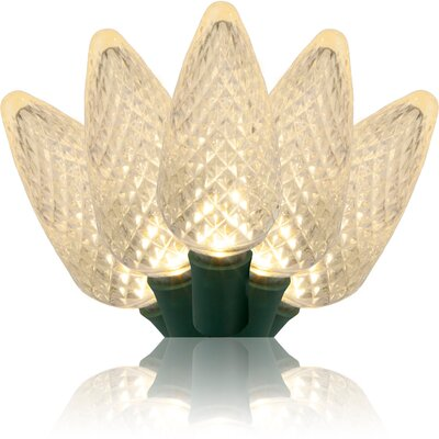 25 Light C9 LED Christmas Lights Bulb Color: Warm White 20349