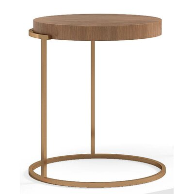 Servogiro End Table Finish: Walnut / Bronze