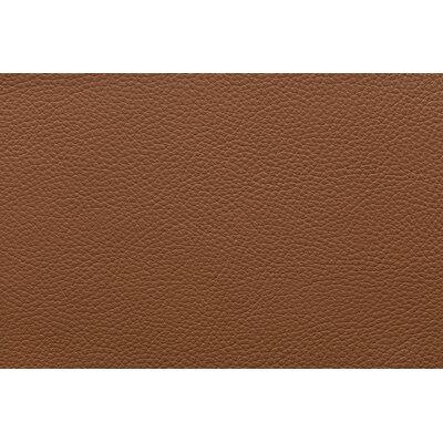 Esse Armchair Color: Brown