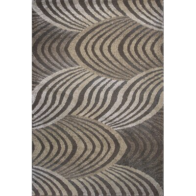 Timeless Verde Havana Area Rug Rug Size: Rectangle 53 x 78