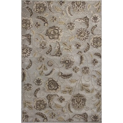 Timeless Silver Charisma Area Rug Rug Size: Rectangle 53 x 78