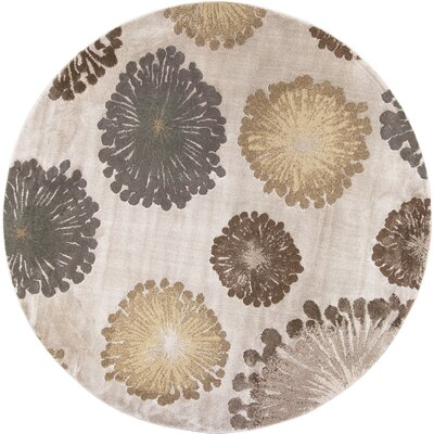 Timeless Silver Starburst Area Rug Rug Size: Round 77