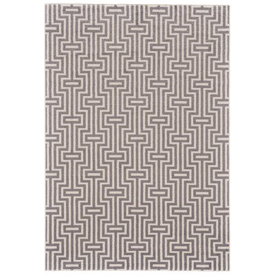 Methow Valley Gray Area Rug Rug Size: 53 x 76
