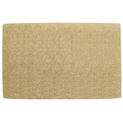 No Border Doormat Rug Size: 38 H x 60 W x 1.5 D