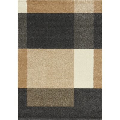 Aubuchon Simple Blocks Area Rug Rug Size: 53 x 77