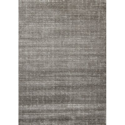 Lowesdale Dark Grey Solid Area Rug Rug Size: 53 x 77