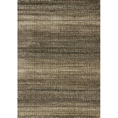 Burban Brown Solid Area Rug Rug Size: 710 x 1010