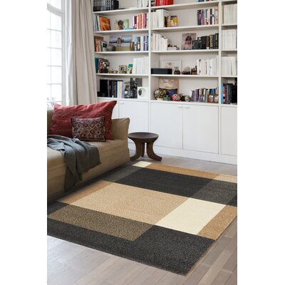 Aubuchon Simple Blocks Area Rug Rug Size: 53 x 77
