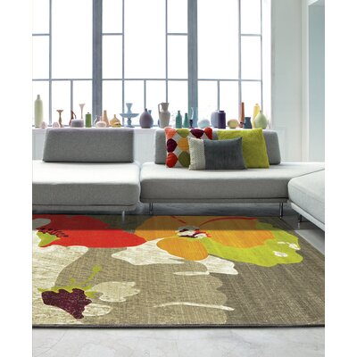 Allyson Brown Area Rug Rug Size: 53 x 77