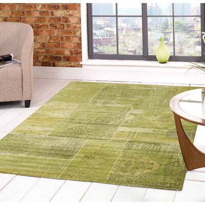 Albertina Brilliant Green Area Rug Rug Size: 57 x 710