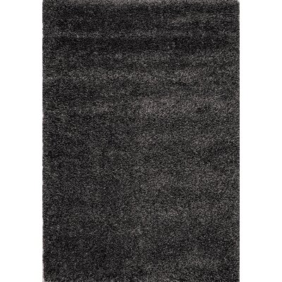 Barry Luxurious Speckled Charcoal Area Rug Rug Size: 53 x 77