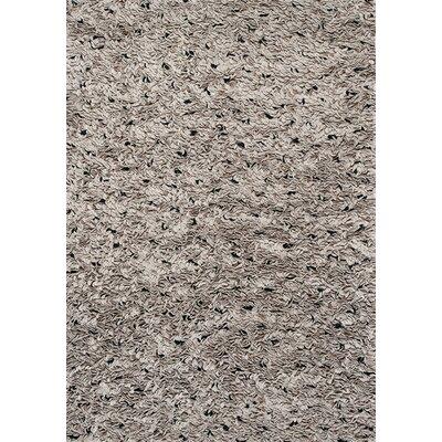 Sundy Coins Grey Area Rug Rug Size: 53 x 77
