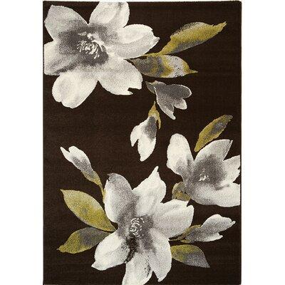 Lyme Black Flowers II Area Rug Rug Size: 53 x 77
